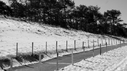 photographie art chemin dune monochrome