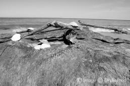 photographie d'art rocher en monochrome